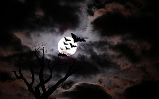 Bats with moon background black halloween wallpaper