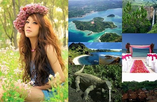 Komodo & Flores Adventure Tours 6 Days / 5 Nights