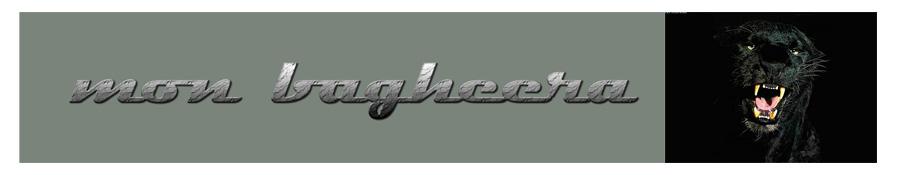 mon bagheera
