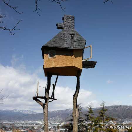 kerangka rumah on ha ini betul2 macam rumah burung walit...atasnya tu mampu bertindak ...