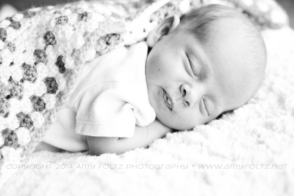 black and white photo of a newborn - Terre Haute photographer