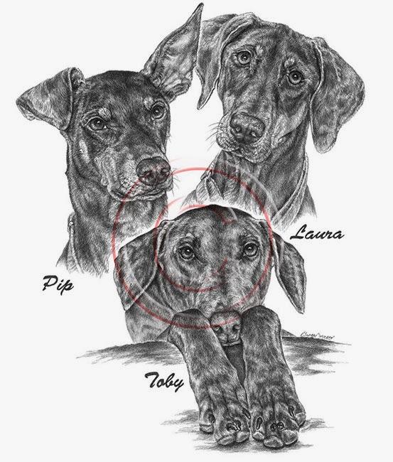 Custom Pet Portrait of 3 Doberman Pinschers by Kelli Swan in Pencil