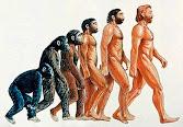 ADAPTACIÓN Y EVOLUCIÓN HUMANA