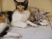 Nina e Mia