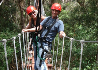 Maui Piiholo Tree top canopy Tours Tickets and Reservations
