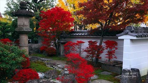 慈受院(じじゅういん)