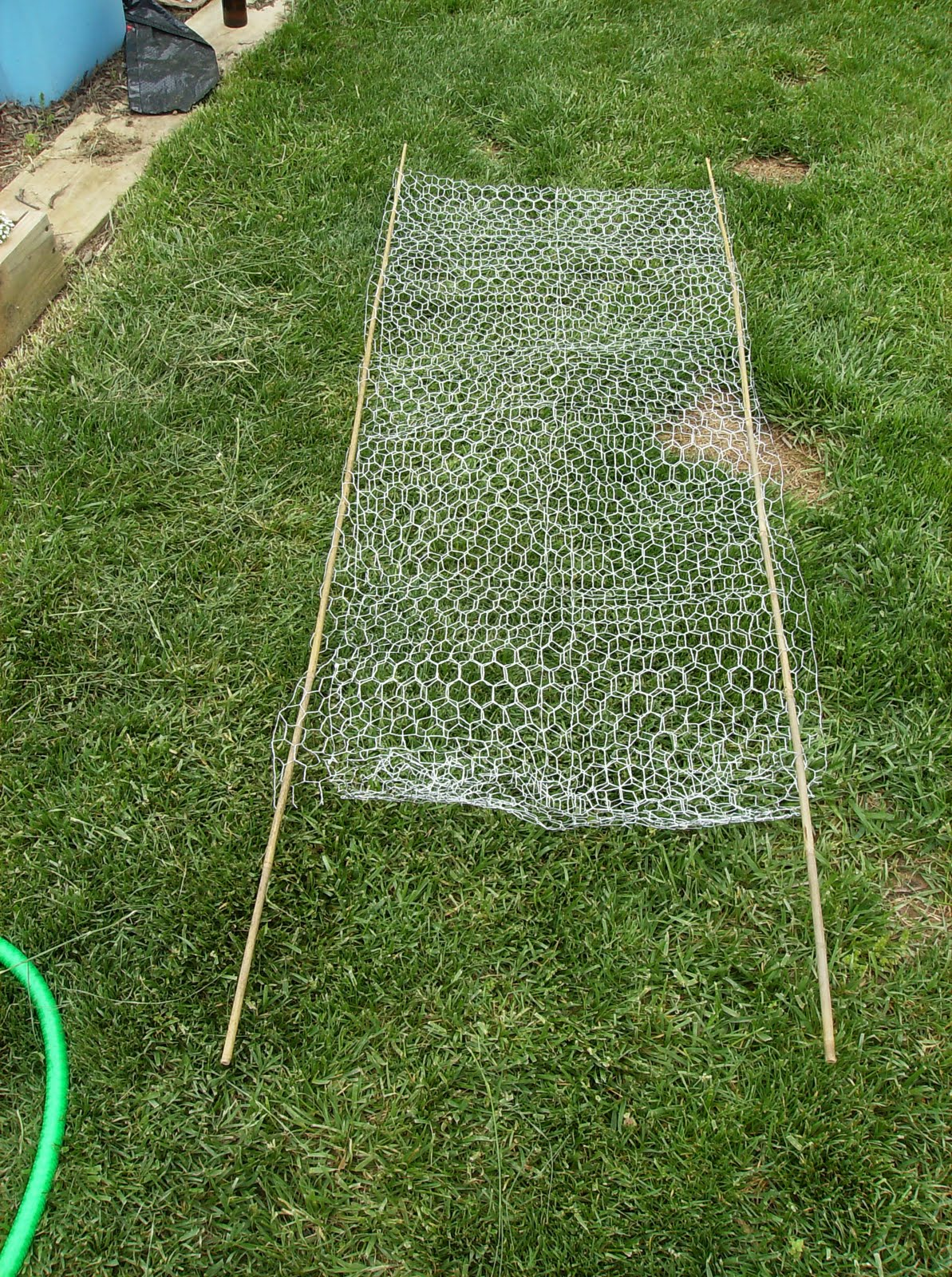 building a low cost vegetable garden trellis in pictures the two poles in