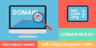 Ciri-Ciri Domain Hasil Carding Cara Cek