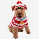 disfraces para trios, disfraces en familia, disfraces baratos, disfraces para perros baratos
