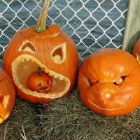 Pumpkins on the Pier Festival CT_New England Fall Events
