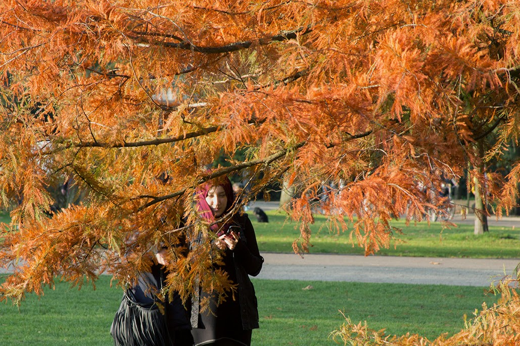 two girls between the red trees