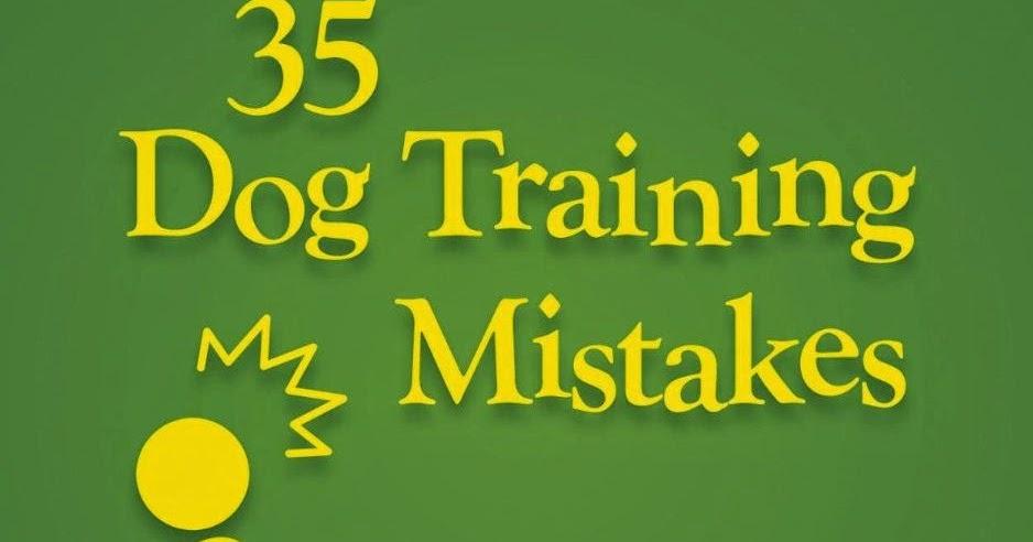 Amazon Dog Training Books Uk