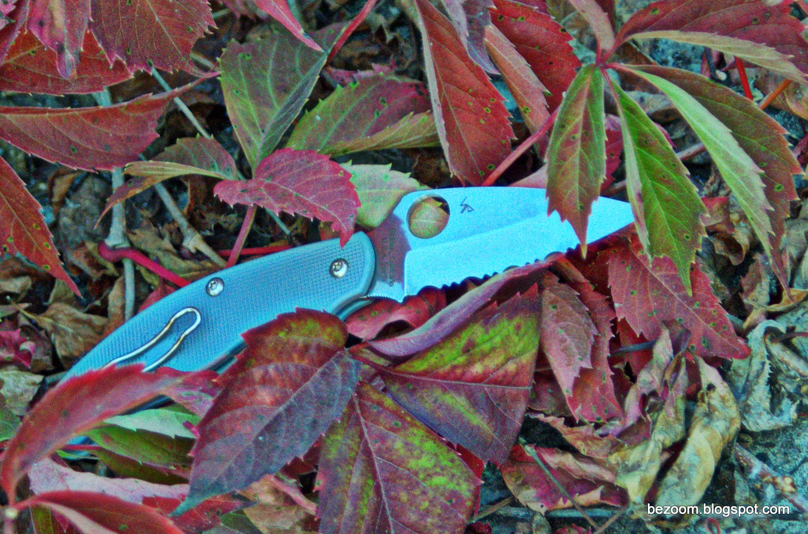 Spyderco UK Penknife