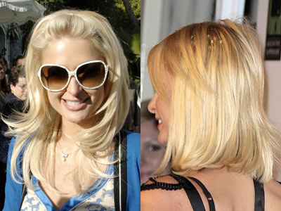 Celebrity Extension Hair 62