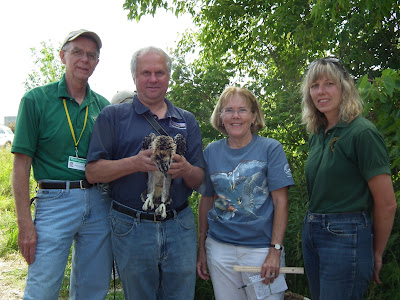 Osprey flourish in southern Michigan: A story of success
