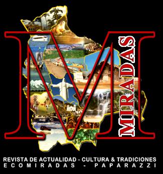 MIRADAS VIRTUAL