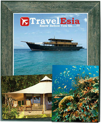 http://www.travelesia.co/2013/03/moyo-island-offers-exotic-natural-world.html