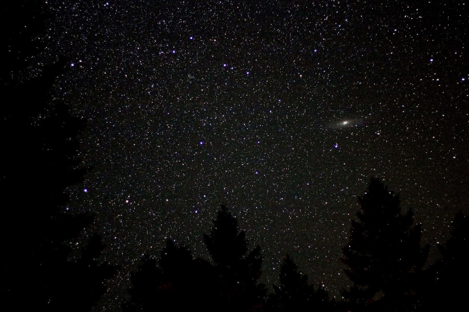 Thiên hà Tiên Nữ trên bầu trời khu cắm trại Montana vào giữa tháng 8 năm 2012. Tác giả : Ted Van.