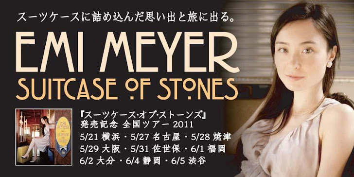 Emi Meyer Suitcase of Stones