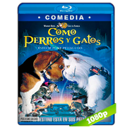 Como perros y gatos (2001) Full HD 1080p Audio Dual Latino-Ingles