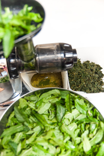 Mint extract juicing with Omega 8006, mint juice and pulpe