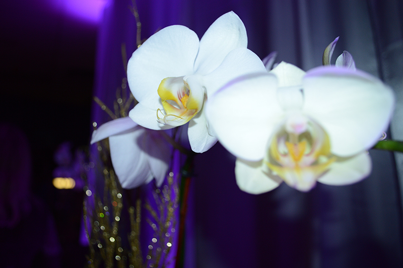 orchids at the fashion for charity event