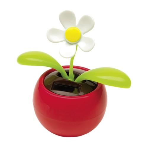 kwiatek z panelem słonecznym