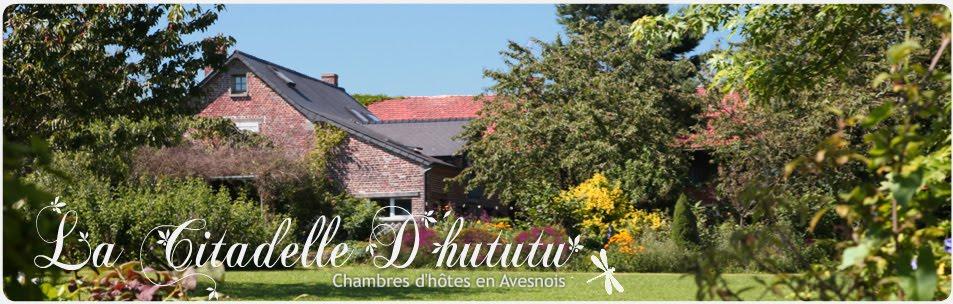 La Citadelle d'Hututu - Chambres d'hôtes en Avesnois