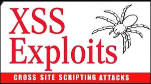 Download XSS book free