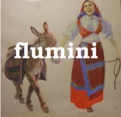 Flumni