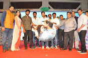 Bhale Bhale Magadivoy audio launch-thumbnail-14