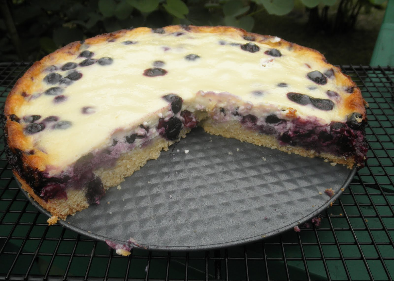 Concetta's Cafe: Nova Scotia Blueberry Cream Cake