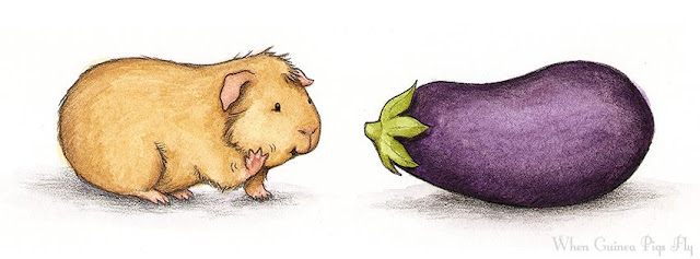 морские свинки, картинки про морских свинок, Иллюстрации Lesley DeSantis