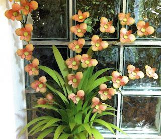 kreativstudio annett meine neuz chtung die ananas orchidee. Black Bedroom Furniture Sets. Home Design Ideas