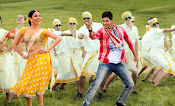 Aagadu movie latest photos-thumbnail-7