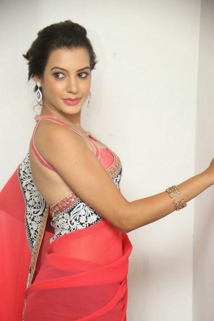 Deepksha Panth Spicy Pics in Backless Pink Choli and Transparent Pink Saree Stunning Beauty