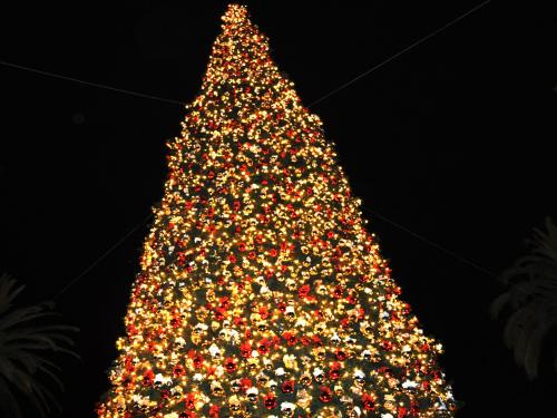 Famous Christmas Tree In New York
