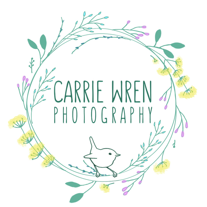 Carrie Wren Photography - South Central PA / Gettysburg Photographer