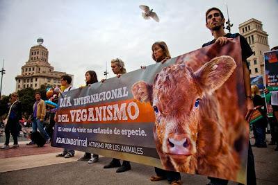 imagen dia mundial del veganismo 1 noviembre 05