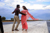 Thimmiri movie photos gallery-thumbnail-15