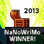 Nano 13 Winner