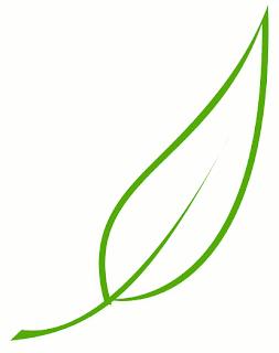 Folha Cartoon, Desenho de Folha