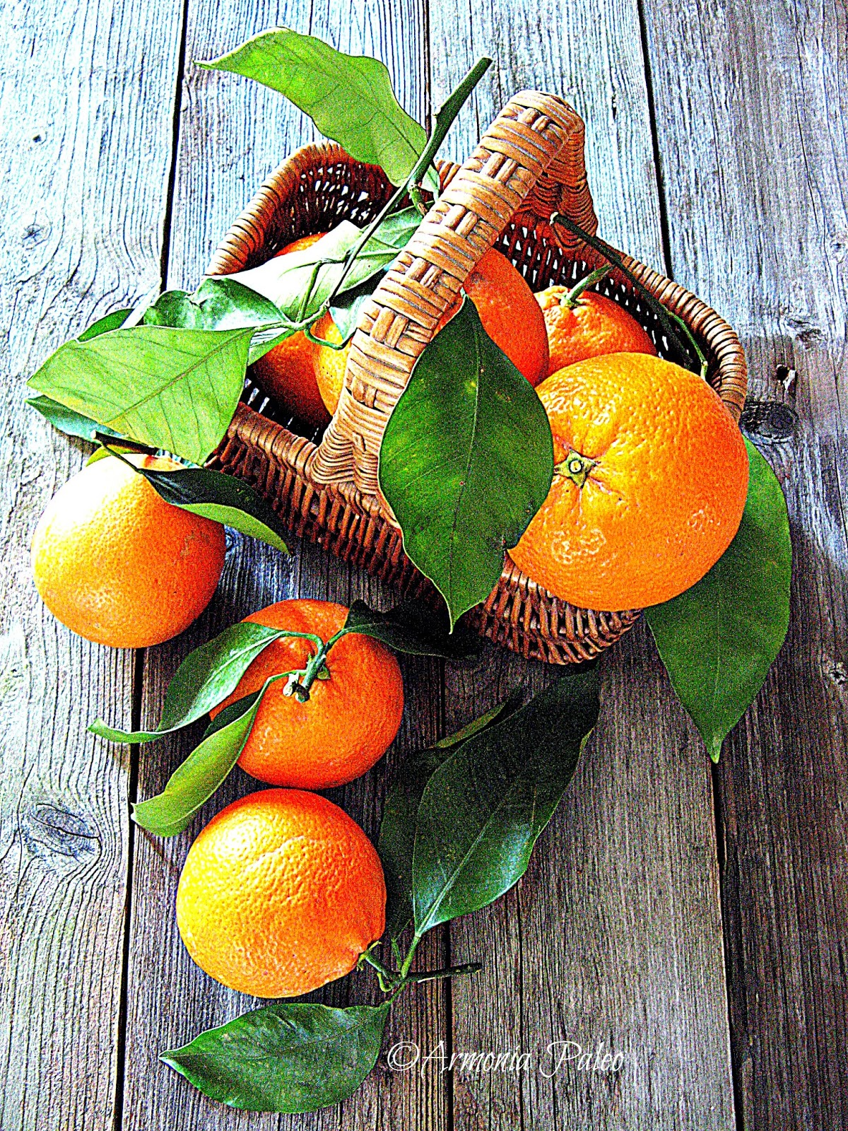 Orange Curd di Armonia Paleo