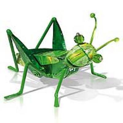 Insectos que chupan sangre