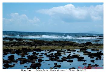 Rebalaje de Punta Carnero