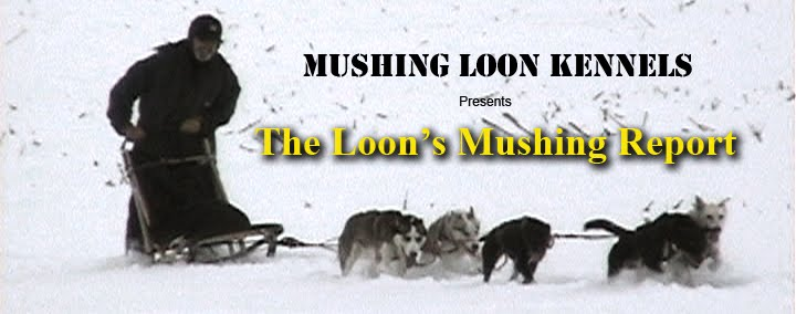 The Loon&#39;s Mushing Report