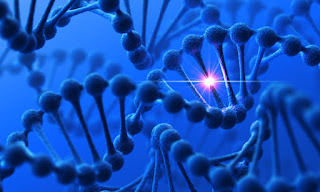 New View of God Could Break Cycle of Heredity