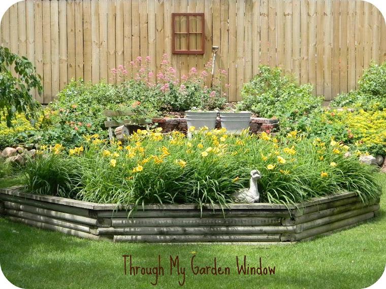 Through My Garden Window