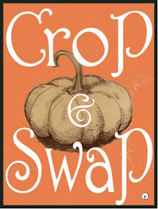 Crop and Swap
