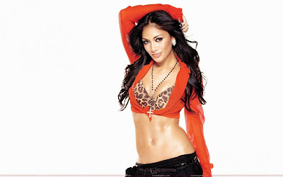 nicole_scherzinger_beautiful_wallpaper_fun_hungama_forsweetangels.blogspot.com